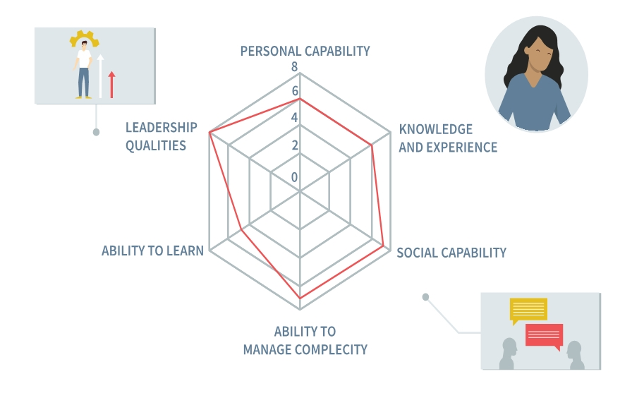 Assessing competence as a wholeness based on capabilities, skills, and knowledge